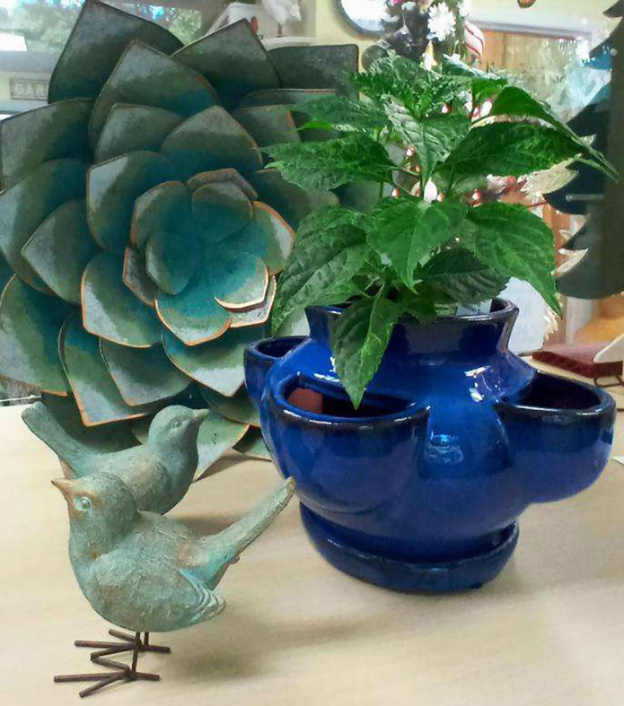 Nature-themed decor and fun planters