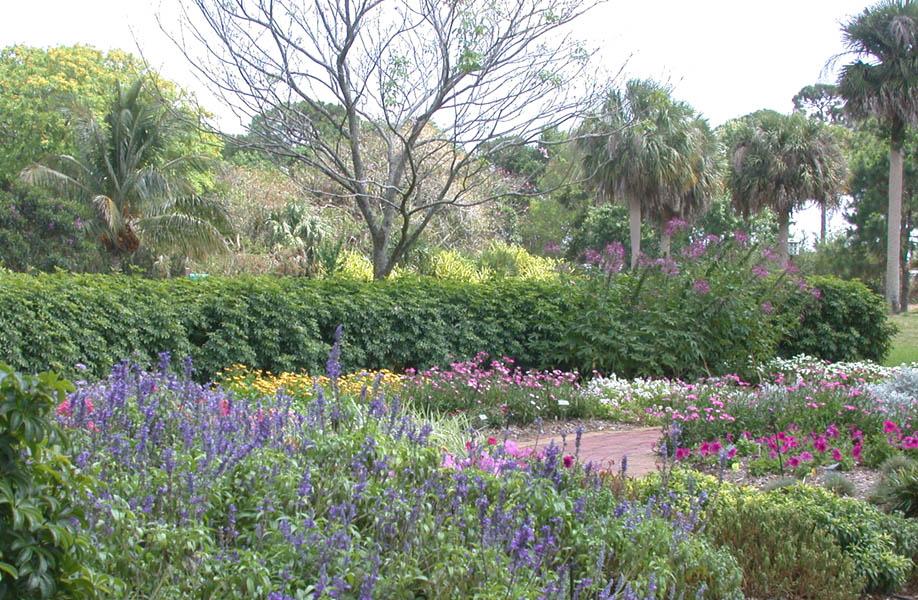 Our Gardens - Mounts Botanical Garden of Palm Beach CountyMounts ...